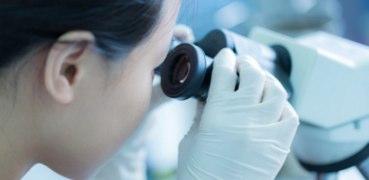 細胞の母である幹細胞