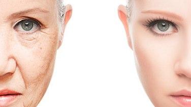 肌再生に効果的な幹細胞美容液を使えばシミ・しわ・そばかすが目立たなくなる