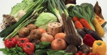 食物繊維を含む食べ物は?