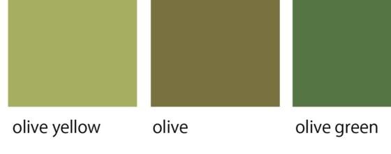 ニュアンスカラーのオリーブはカーキにとても近いカラー