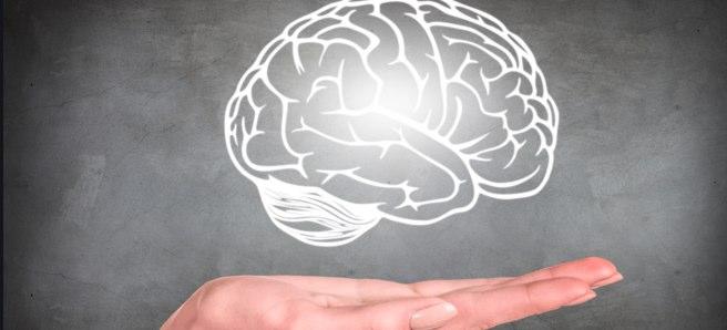 右脳派で左利きの人は天才が多いって聞いたけど、ホント?